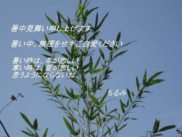Img_9885
